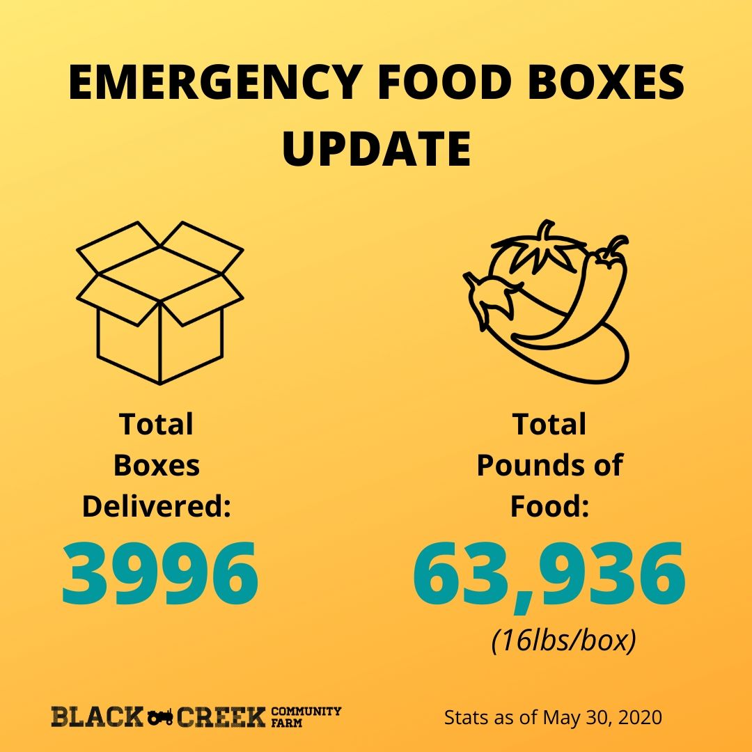 Total Boxes Delivered: 3996, Total Pounds of Food: 63,936 (16lbs/box)