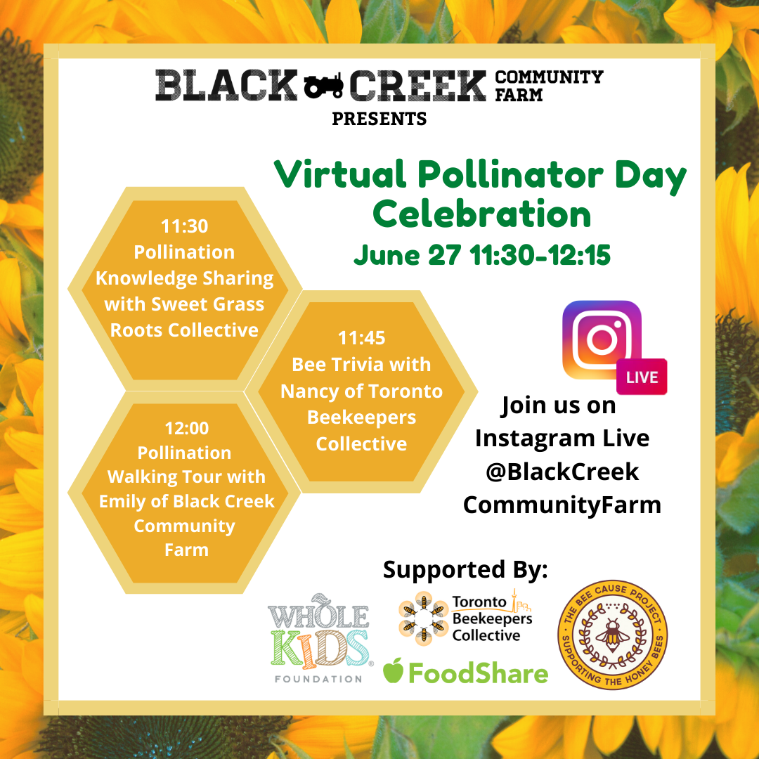 Pollinator Day at the farm, June 27th