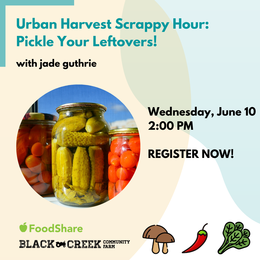 [Photo description: Title text reads : Urban Harvest Scrappy Hour: Pickle Your Leftovers! with jade from FoodShare. Image of various vegetables pickles in glass jars. Date: Wednesday, June 10, 2020. Register Now! - with Black Creek Community Farm logo, and image of cartoon vegetables next to it]