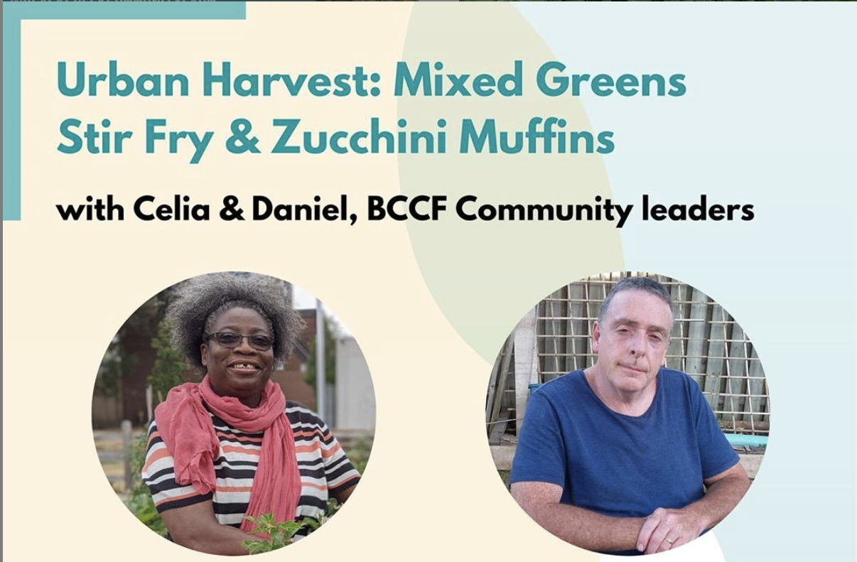 Title text reads : Urban Harvest: Mixed Greens Stir Fry & Zucchini Muffins with Celia & Daniel, BCCF Community leaders. Separate images of Celia & Daniel. Date: Wednesday, July 22, 2020.