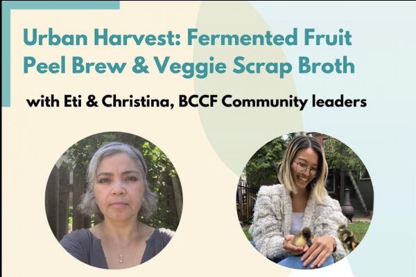 Urban Harvest Eti and Christina: Fermented Fruit Peel Brew and Veggie Scrap Broth